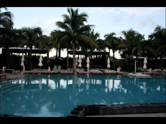W South Beach: The pool you probably wont get a bed beside.