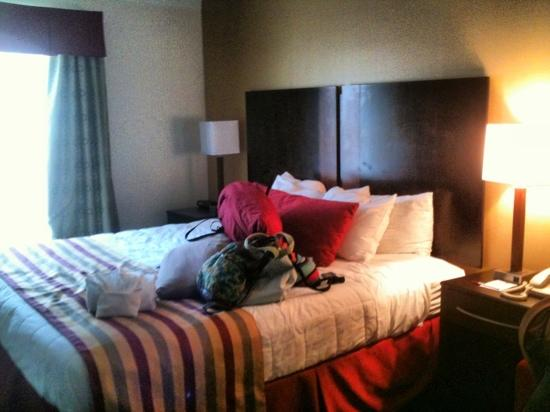 Clarion Inn &amp; Suites: King size bed...pardon our stuff on the bed :-)