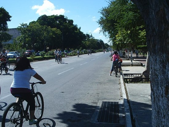 Municipality of Merida, Мексика: Paseo De Montejo - SouthBound on a Sunday