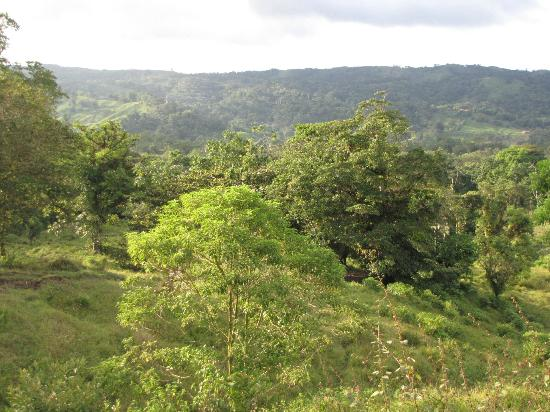 Lost Iguana Resort & Spa: View from a hilltop at Lost Iquana