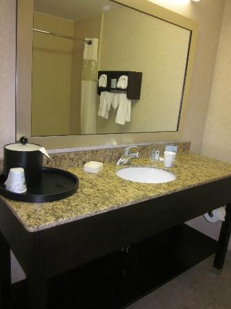 Hampton Inn Port Huron: lots of counter space