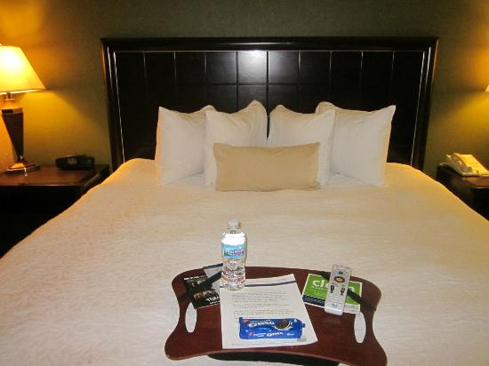 Hampton Inn Port Huron: My favorite Hampton bed