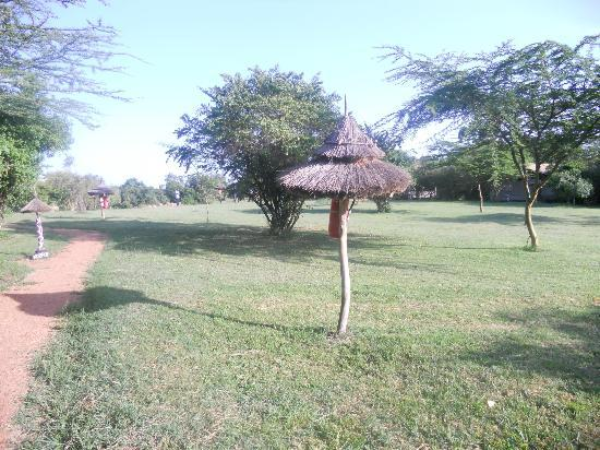 Olumara Tented Camp: Olumara
