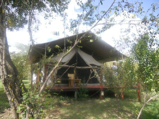 Olumara Tented Camp: Tent