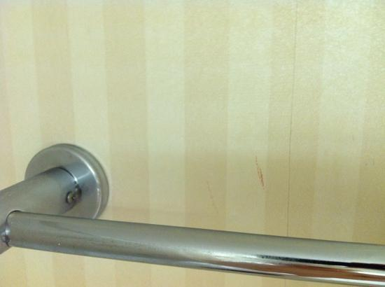 Millennium Hotel Cincinnati: Two splatter stains... definitely blood. Room 1850.