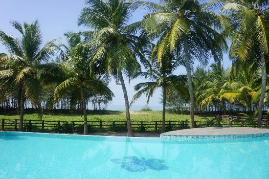 The Nattika Beach Resort: pool