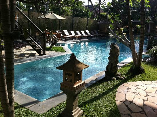 Mutiara Bali Boutique Resort & Villas: Plenty of swim space for all, I found a few frogs watching me on a night swim