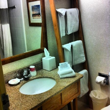 Ramada on the Beach: mind you, not all the bathrooms where set up like this, some had the sink outside the bathroom b