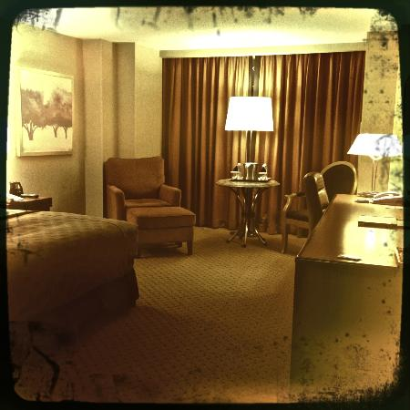 Hilton Washington Dulles Airport: The Executive Room