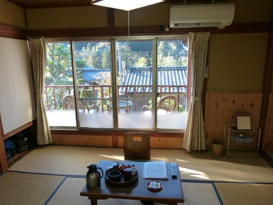 Ryokan Fujioto: View from our oom