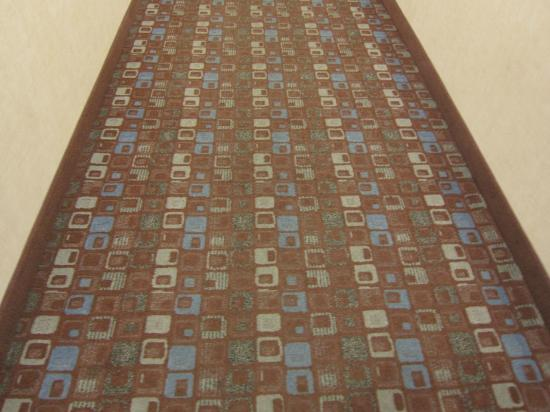 Hampton Inn Carlsbad-North San Diego County: hall carpet pattern
