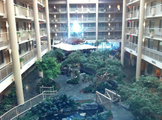 Embassy Suites by Hilton Syracuse: atrium