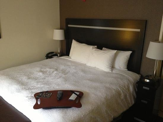 Hampton Inn Jericho Westbury: king sized bed