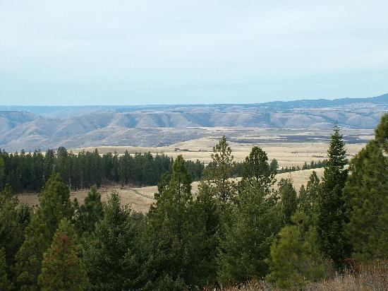 Whitebird Summit Lodge: View of the Prarie from the Summit