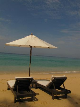 โรงแรมทวินปาล์ม: View from the beach loungers at Catch Beach Club