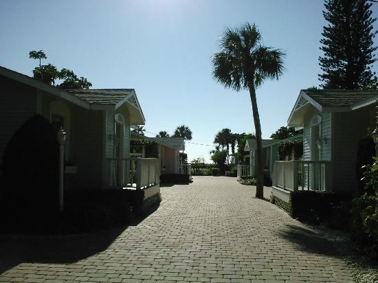 Arbors by the Sea: View from Iris cottage