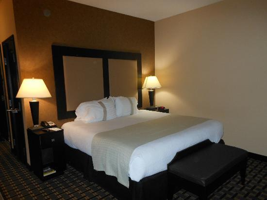 Holiday Inn Arlington NE: King bed