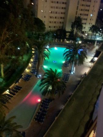 Sol Mirlos Tordos: Mirlos pool at night