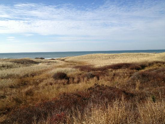 Chilmark, MA: The beach and ocean from the Moshup Trail, 5 mins walk down a grassy path from the Inn