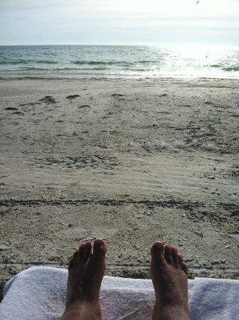 The Ritz-Carlton, Sarasota: Gorgeous beach