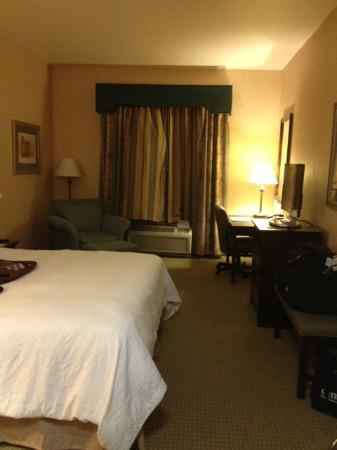 Hampton Inn & Suites Woodland: King bed with chair