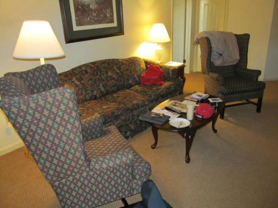 Wyndham Patriots Place: Living room area