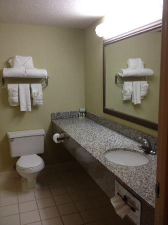 Holiday Inn Select Lynchburg: Plenty of towels, but no magnifying mirror. Sink hardware was wobbly and needed work.