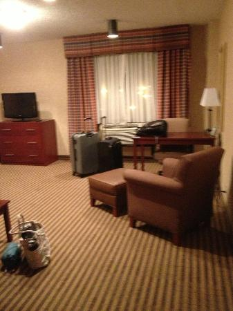 Holiday Inn Select Lynchburg: Standard furniture