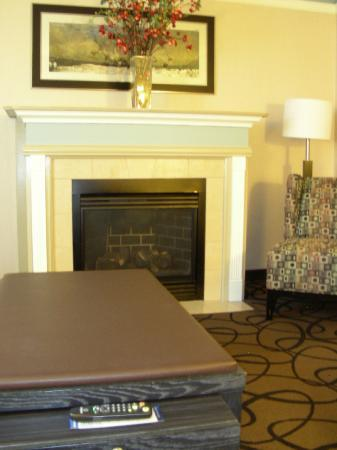 Hampton Inn & Suites Buffalo Downtown: King Suite - Fireplace