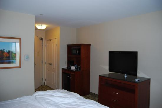 Hilton Garden Inn LAX/El Segundo: Room