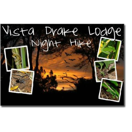 Vista Drake Lodge: vistadrakelodge  night hike