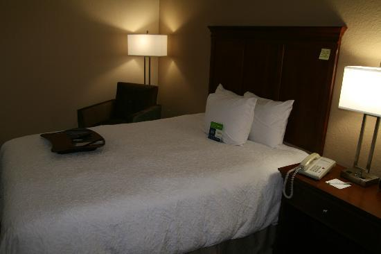Hampton Inn Gainesville: Two queen bed