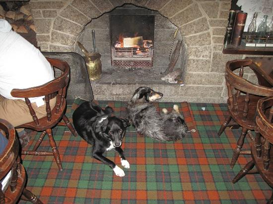 Cairn Hotel: Very cosy