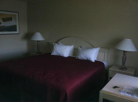 Pacific Inn Monterey: King size bed , firm mattress, decent pillows