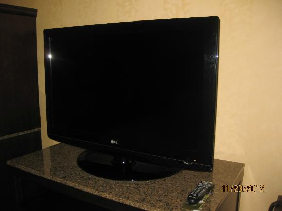 Hilton Garden Inn Washington DC / Bethesda: Television