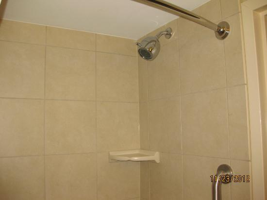 Hilton Garden Inn Washington DC / Bethesda: Shower head