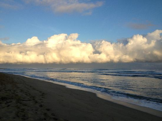 Swell Surf Camp: Beach - Encuentro