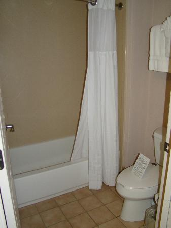 Staybridge Suites Wilmington - Brandywine Valley: Bathroom