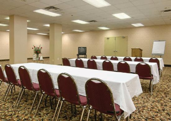 Comfort Inn Downtown: Meeting