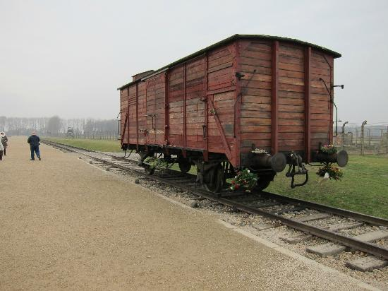 munich to auschwitz by train