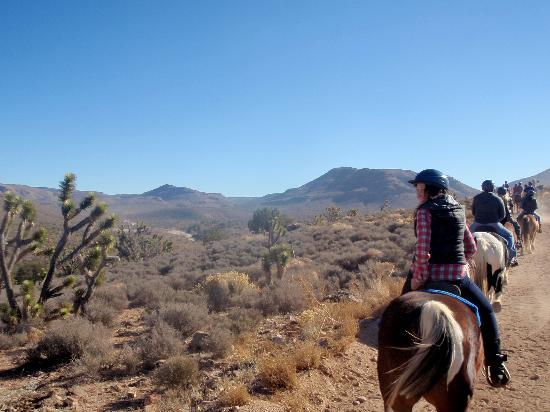 Meadview, AZ: Horseback riding - old Mormon Trail