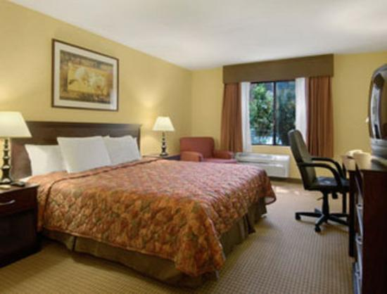 Days Inn San Bernardino/Redlands: Standard One King Bed Room