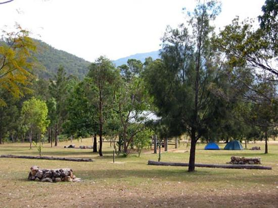 Mt Barney Lodge Country Retreat: Camp Grounds