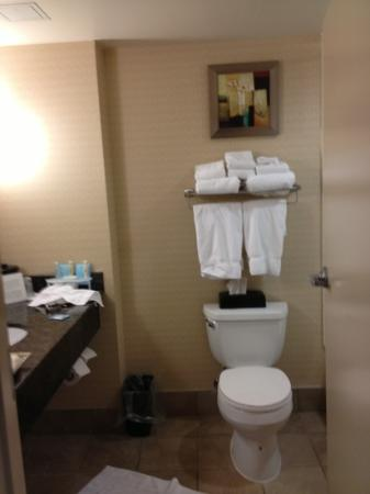 Holiday Inn Express Hotel &amp; Suites Halifax Airport: bathroom