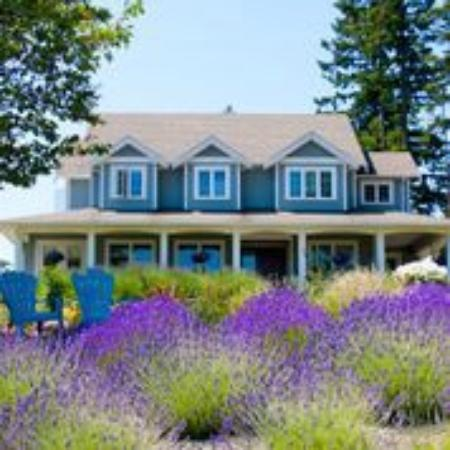Cobble Hill, Canada : B&B