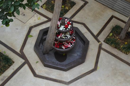 Riad Misria: Flowers in the pond in the middle of the patio