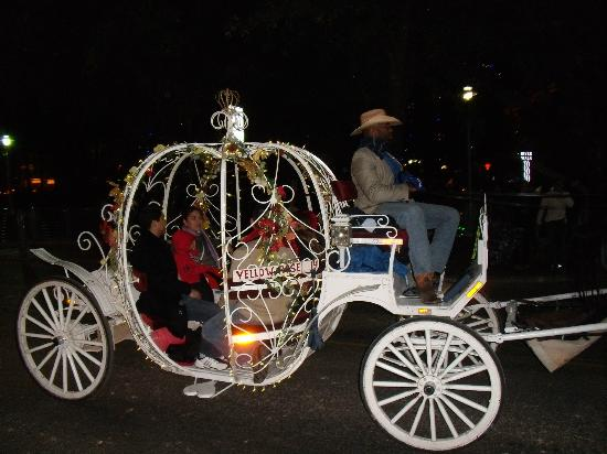 Comfort Suites Alamo/Riverwalk: Riverwalk carriage ride