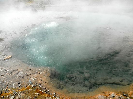 Rift Valley Province, เคนยา: Hot Springs at Lake Bogoria