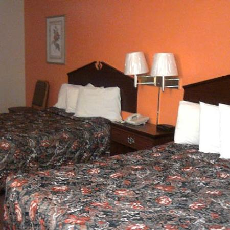 Regency Inn and Suites: Beds