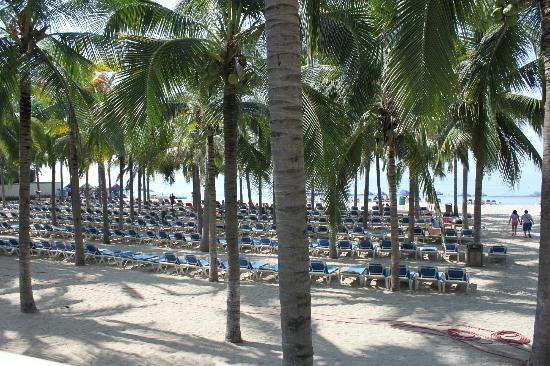 Hotel Riu Vallarta: Beach chairs & ocean